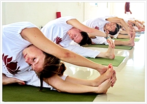 300 hours hatha yoga instructor training course in India 2016